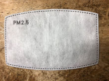 Picture of PM 2.5 Activated Carbon Filter